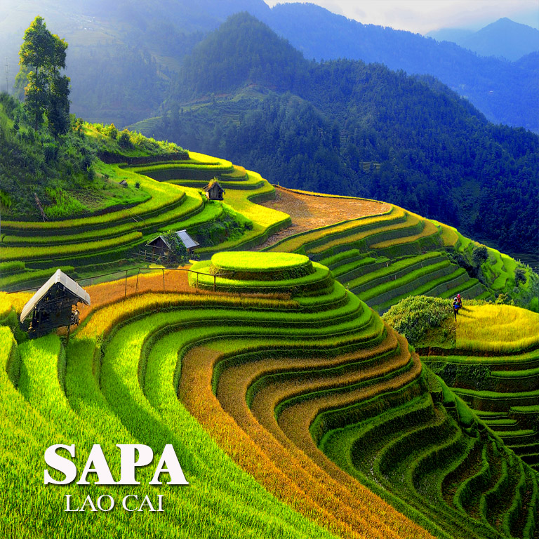 Sapa trekking tour 2 days 1 night stay at homestay